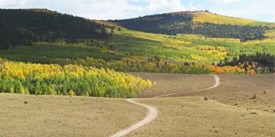 """Scenic-Drive-Aspen-Ridge"""