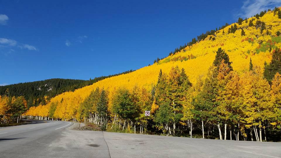 monarch pass summit