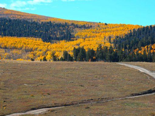 Aspen Ridge to Chinaman Gulch