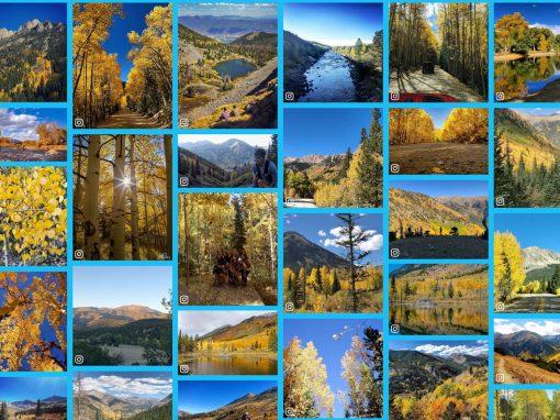 Autumn Photo Gallery