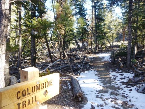 columbine trail salida copy
