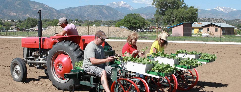 Colorado Farm To Table