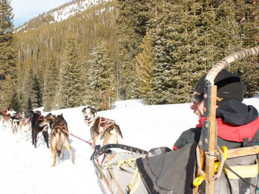 Monarch Dog Sled Rides